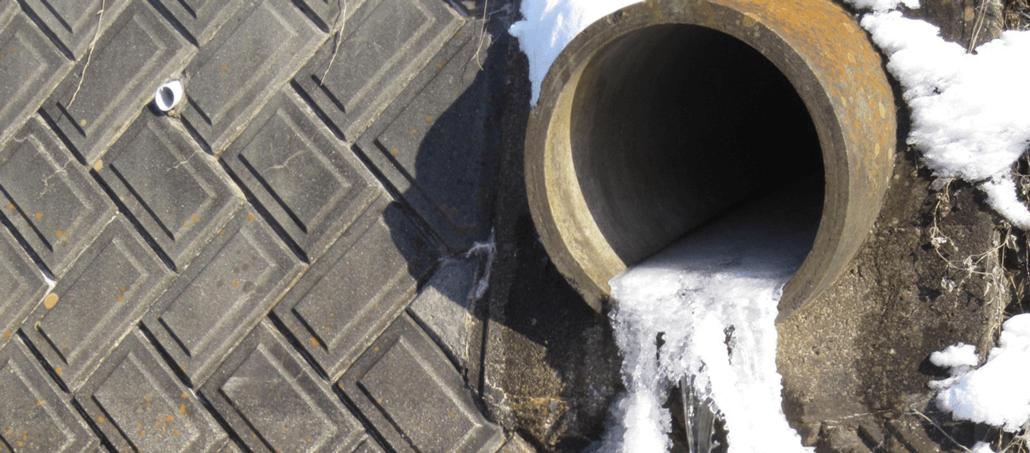 Bild zu Artikel: Einfache Maßnahmen gegen Frostschäden